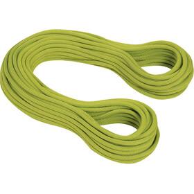 Mammut 9.5 Infinity Dry Cuerda 80m, pappel-limegreen